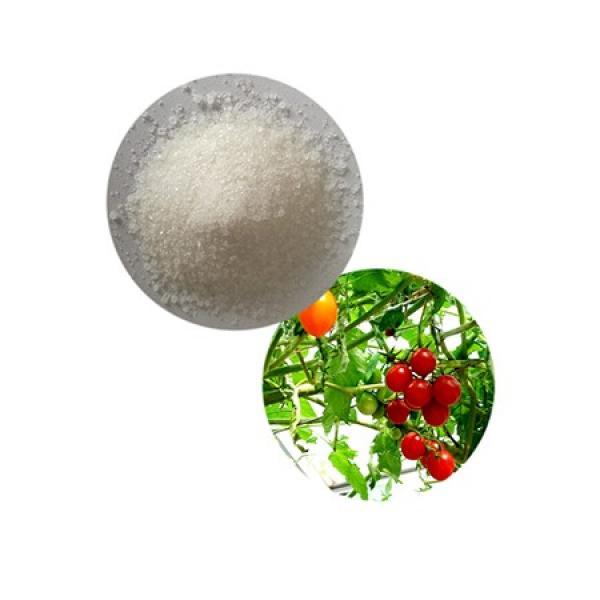 High Quality Nitrogen Fertilizer Can Calcium-Ammonium-Nitrate